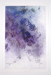 STAR SERENADE - calcografica da matrice polimerica stampata dall'artista - 2007 - cm 90x60