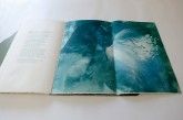 Alessandra Angelini_Il Giardino è aperto_libro d'artista_2015_© Andrea Artoni (7)